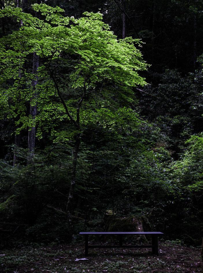 阿寺の七滝 CanonEOS5Dmk2 EF24-70F4L photo:toshimasa