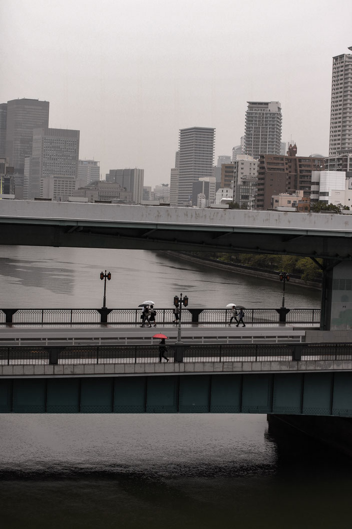 天満橋付近 CanonEOS8000D Sigma50mmF1.4 photo : toshimasa