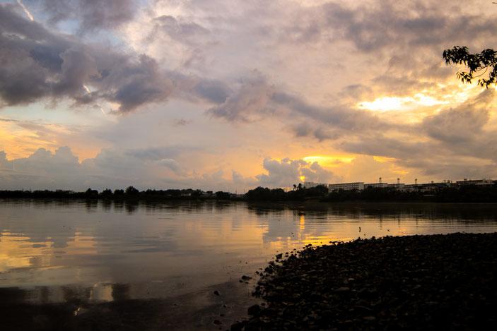 春日井野池 CanonEOS8000D SAMYANG14mmF2.8 photo:toshimasa