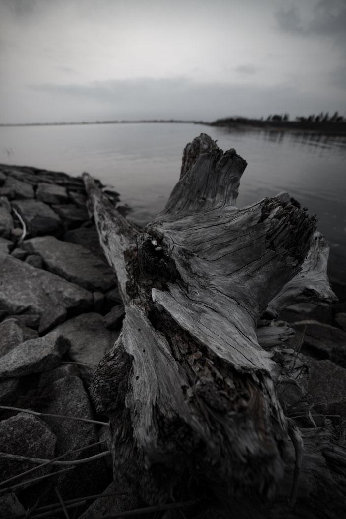 海上の展望台 CanonEOS5Dmk2 SAMYANG14mmf2.8 photo : toshimasa