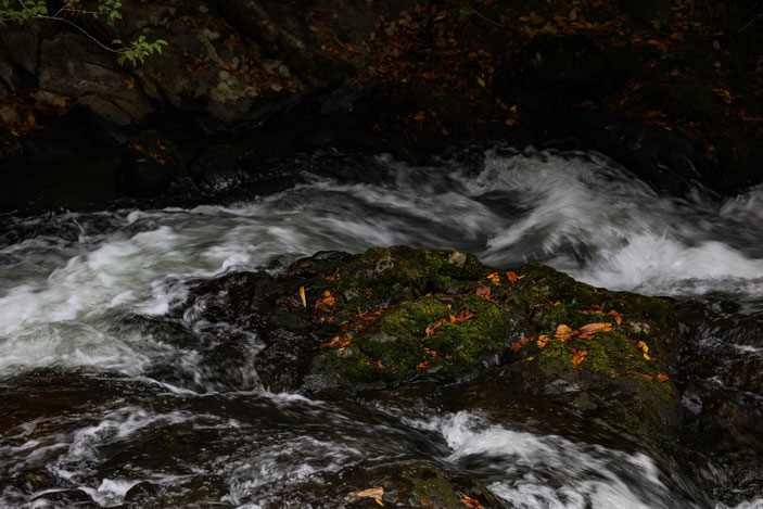 二畳ケ滝 CanonEOS 5Dmk2 CanonEF70-300mmF4-5.6L iso100 155mm f5.6 1/40 Tv photo : toshimasa