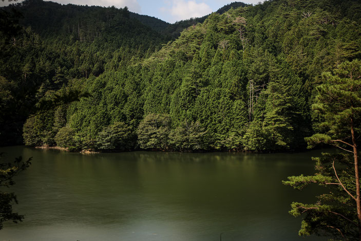 """三河湖園地 CanonEOS5Dmk2 CanonEF24-70mmF4L iso100 41mm f8 8"""" M photo : toshimasa"""