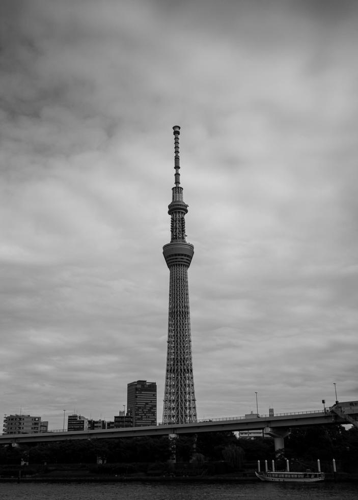 フィルター無し CanonEOS5Dmk2 CanonEF24-70mmF4L iso100 38mm f4 1/3200 M photo : toshimasa