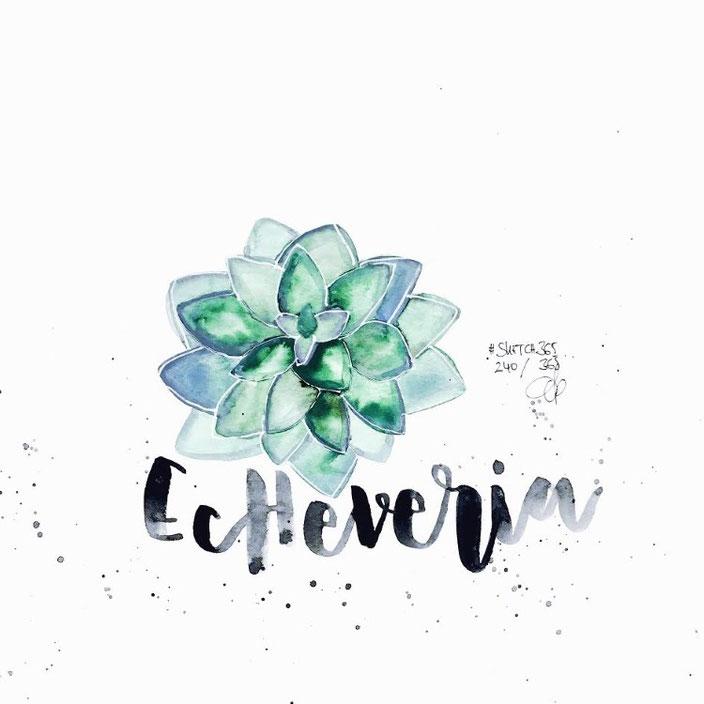 Echeveria - Lettering mit Aquarell von sketchedbytanja für die Letter Lovers