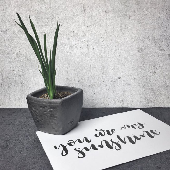 "Lettering ""you are my sunshine"" (Brushlettering vom wortliebelei bei den Letter Lovers)"