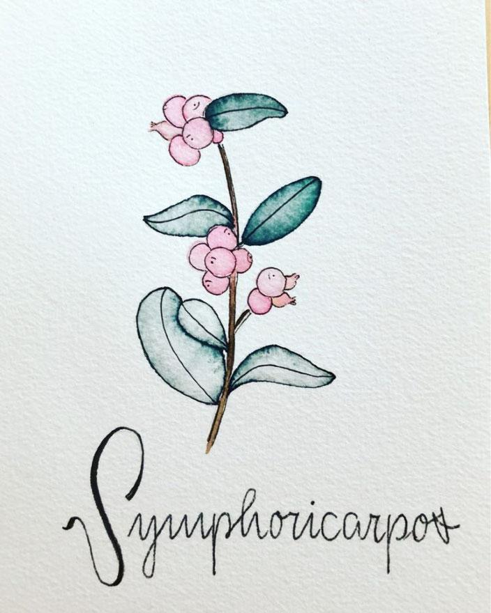 Blumen Aquarell mit Handlettering - letter_fee bei den Letter Lovers