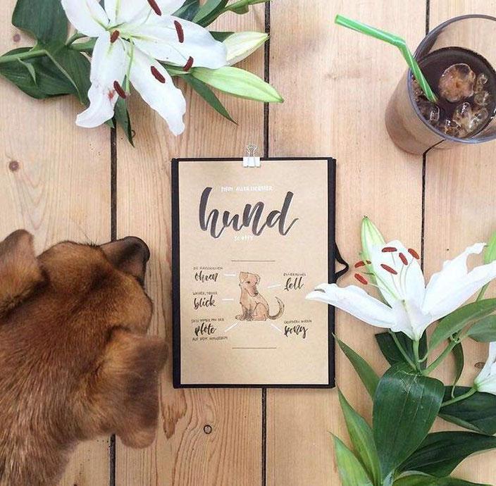 Handlettering mit Aquarell Zeichnung - Hund (clrslzmn bei den Letter Lovers)