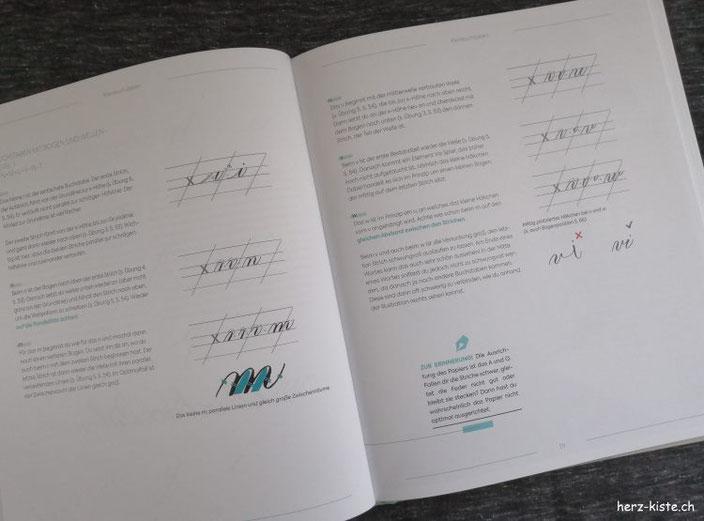 Blick ins Buch: Moderne Kalligrafie von A bis Z - - Aufbau verschiedener Buchstaben als Beispielseite