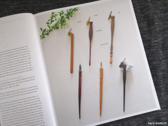 Blick ins Buch: moderne Kalligrafie von Natascha Safarik - verschiedene Federhalter im Bild