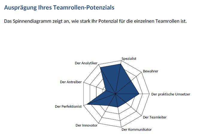 Beispiel Auswertungsmodul CAPTain::smart®; Ausprägung des Teamrollen-Potenzials; CAPTain Test®, Auswertung spezifischer Fragestellungen; Vorbereitung, Durchführung, Transfersicherung von Coachings, Trainings; Führung, Konflikt, Kommunikation, Team, Talent