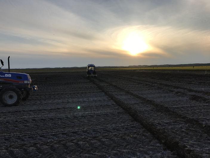 2018年9月5日・6日  肥料後にサブソイラで溝掘り