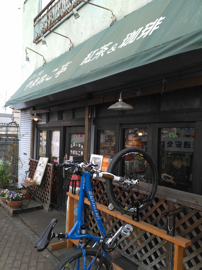 Yamaneko cafe All rights reserved by onegai kaeru