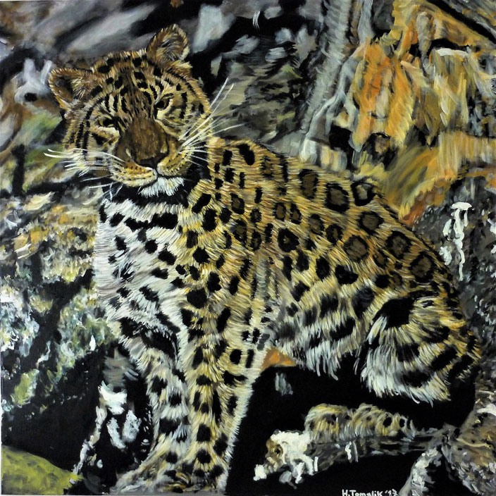 Amur-Leopard, 100 x 100 cm,oil on canvas