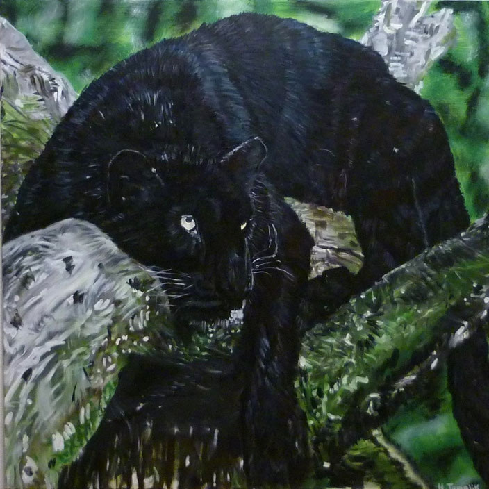 Black Panther. 100 x 100 cm,oil on canvas