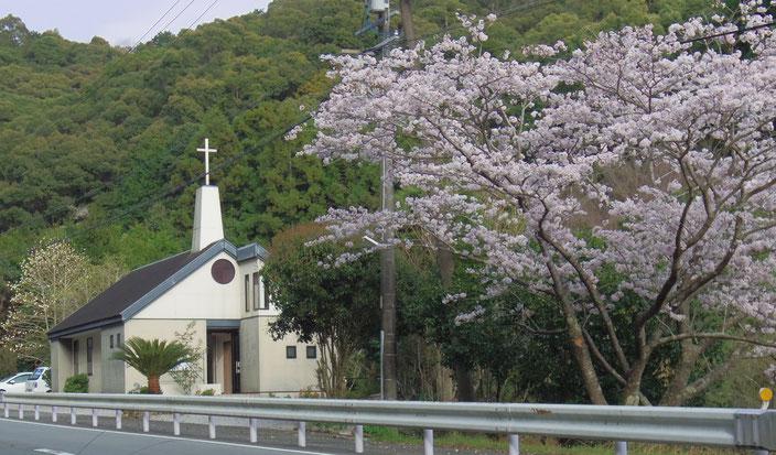 桜の季節の道方チャペル