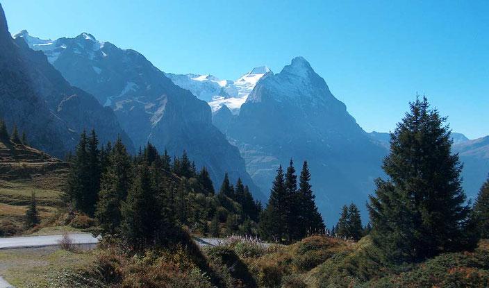 E-Bike Tour mit Gepäcktransport Pan Unesco Weltnaturerbe Jungfrau-Aletsch: Grosse Scheidegg