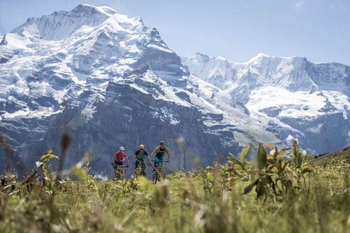 E-Bike Tour mit Gepäcktransport im Berner Oberland: Eiger Loop