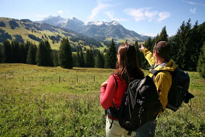 Weitwandern ohne Gepäck in der Westschweiz: Via Alpina