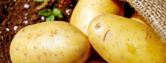 fair4world - Kartoffelsalat 3 mal anders