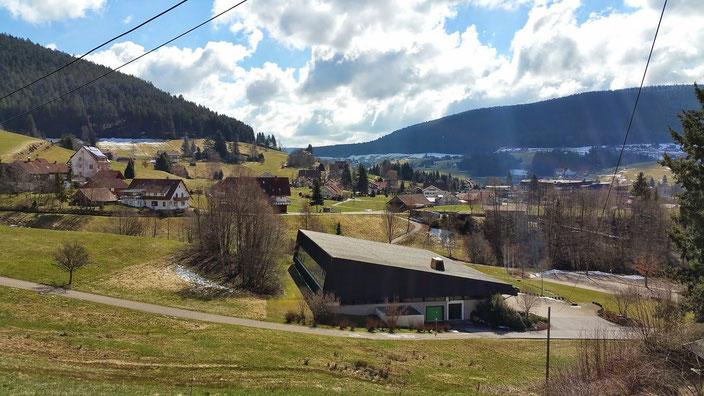 Весна приходит в Шварцвальд в апреле
