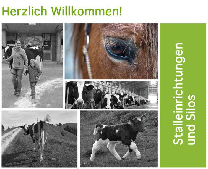 Agro-Widmer Stalleinrichtungen - Dekofoto Startseite