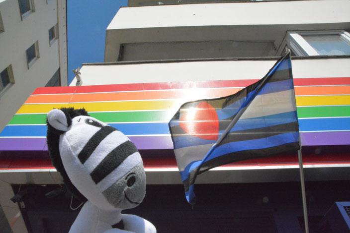 Teddy Tour Berlin - Urlaub für Kuscheltiere - The first travel agency for cuddly toys