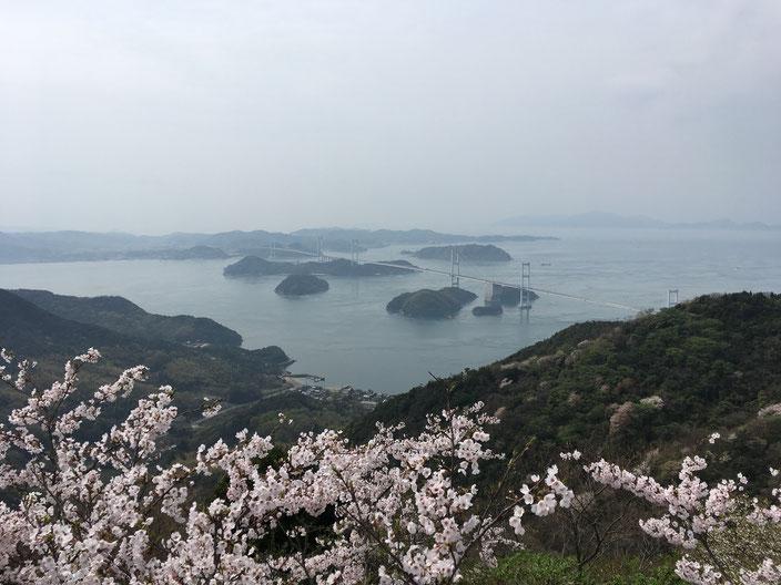 桜と海峡と橋!