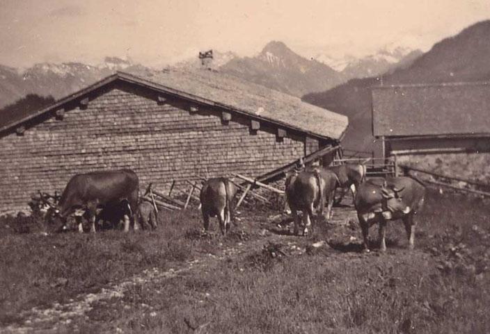 Alpe Osterberg um 1940