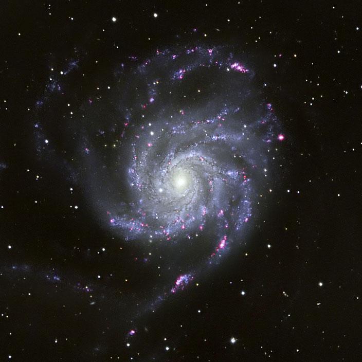 Die Feuerrad-Galaxie M101 - aufgenommen vom 28. - 31. März 2019 in der Sternwarte Flumenthal(22x900s LUM + RGB + Ha)