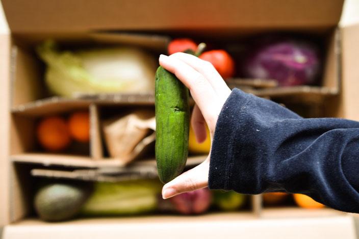 Lebensmittelverschwendung im Überblick: So viel Essen wird in Deutschland verschwendet und das kannst du dagegen tun. RiekesBlog