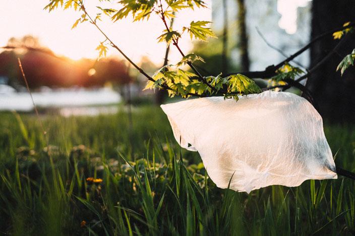 Titelbild: #zerowaste: Aber warum eigentlich? — 5 gute Gründe plastikfrei(er) zu leben, Mülltüte in Baum