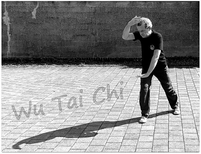 Wu Tai Chi Chuan Schnelle Form