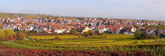"""Kallstadt, idyllisch gelegen am Haardt-Rand inmitten von Weinlagen wie dem """"Saumagen"""". Bekannt für seine gute Gastronomie und feinen Weine - und wegen großer Namen wie Trump oder Heinz."""
