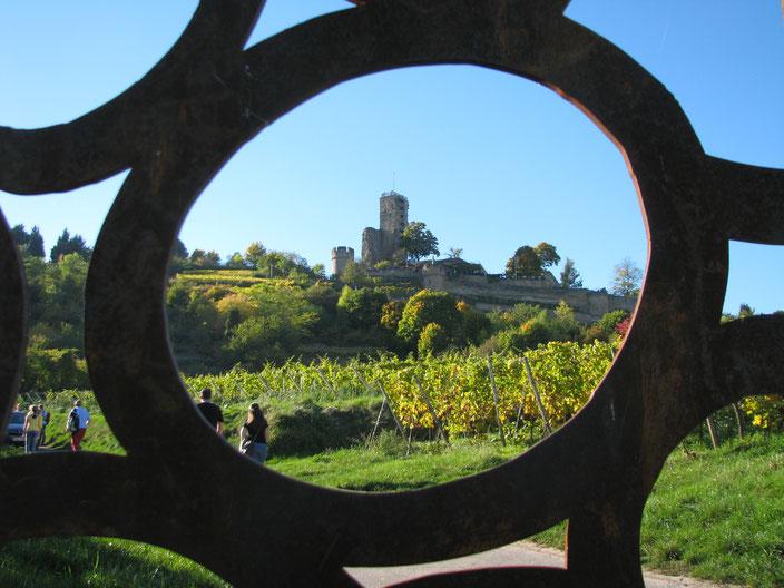 Weinsicht Pfalz Wachenheim Wachtenburg Schlossberg