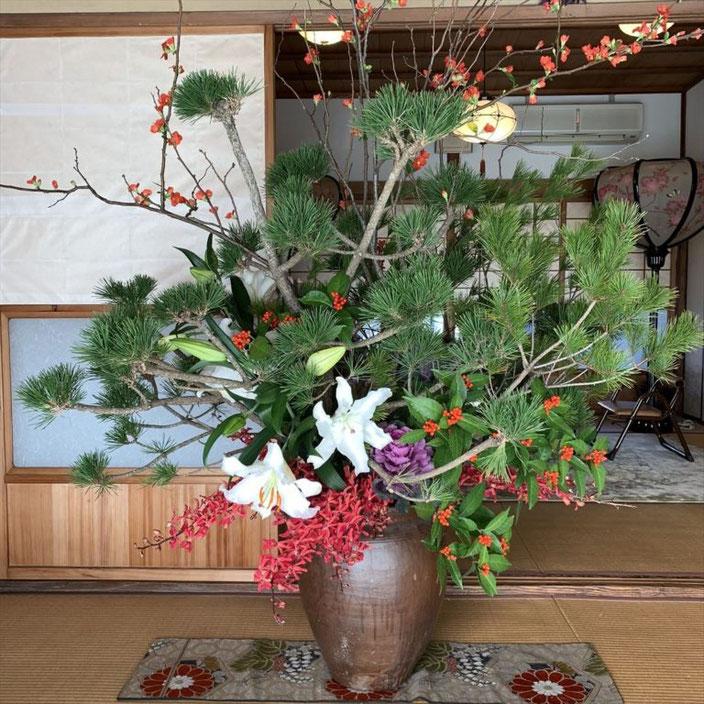 旧正月01-本法寺-東京都文京区のお墓 永代供養墓 法要-