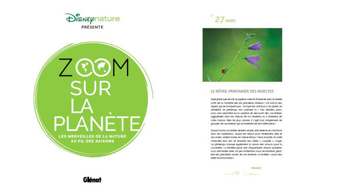 disney nature zoom sur la planete