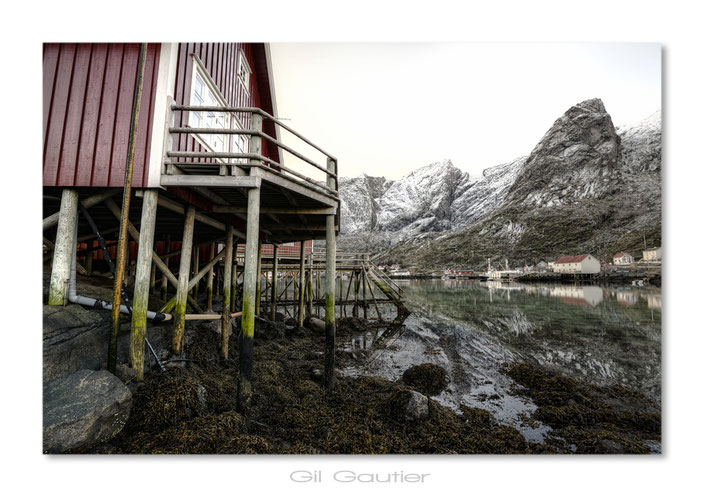 """""""Reine"""" Lofoten - Nordland . Les maisons sur pilotis , typique des Lofoten"""