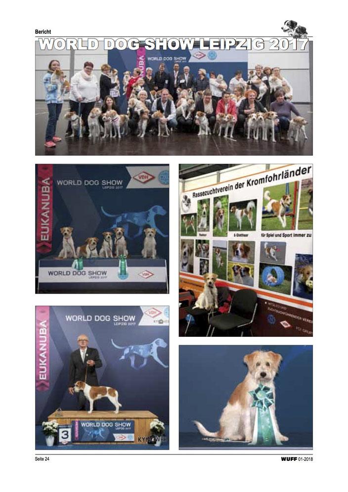 Fotos von der World Dog Show 2017 in Leipzig