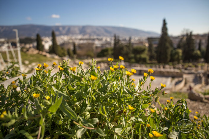 Sightseeing - Akropolis, Athen