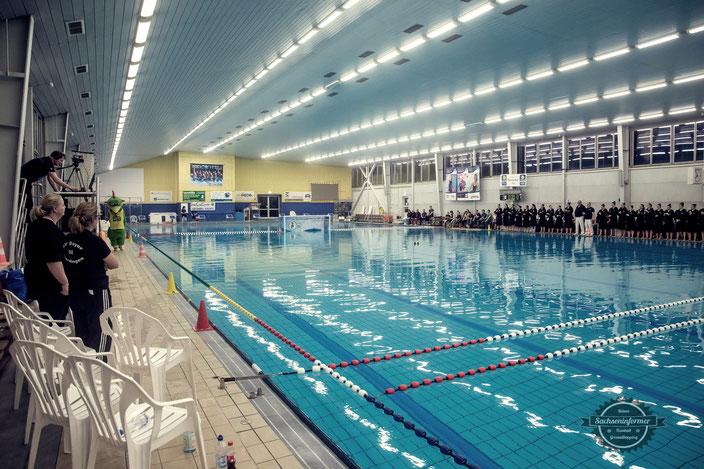 Black Pearls Chemnitz - Schwimmhalle Sportforum