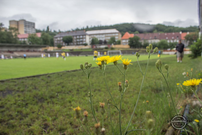 Letni Stadion Litvinov