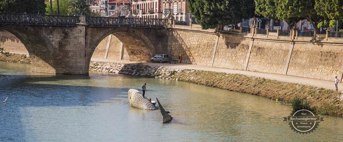 Sightseeing Murcia
