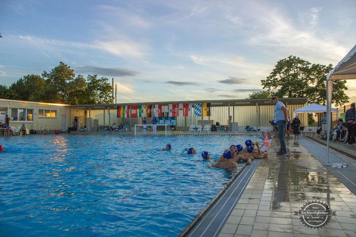 Schwimmclub Chemnitz - Zwergenpokal 2016