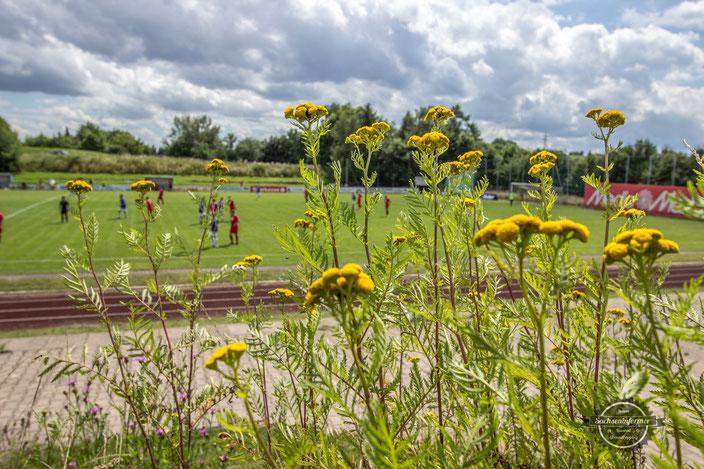 VfB Kulmbach - Sportanlage Forstweg