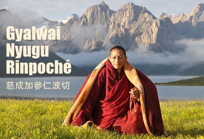 Gyalwai Nyugu Rinpoché 慈成加參仁波切