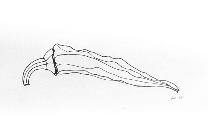 chili hand skizze pen inc alkly.de