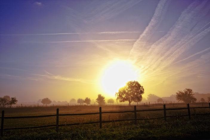 Sonnenaufgang bei Neubeeren, Brandenburg, Feld