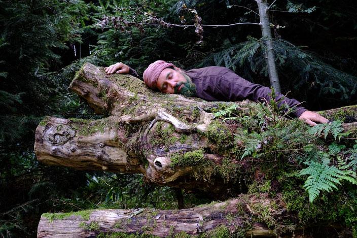 """""""Alice im Wunderwald - eine verrückte Reise ins Wood Wide Web"""" Foto: Tuan Tu"""
