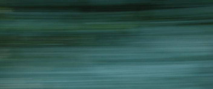 """Leaf maintenance"" by Mel Piper"