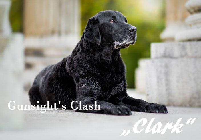 Gunsights Clash - Clark